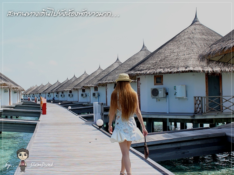 maldives023
